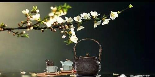 美,是无目的的快乐。美好的事物总能给人愉悦的享受,总能让人在最自然的状态遇见最美的自己。春城的早晨依然清新,城市在鸟语花香中苏醒,天空依旧湛蓝,白云点缀其间,将车水马龙遗忘,以最纯净的姿态迎接新一天的到来。 学茶之人总是多了那么一丝淡然优雅,美好的一天,始于那一缕茶香,一杯香茗。品...<br /><a href='http://www.tea1199.com/a/2016/peixundongtai_0416/975.html'> <<< 详情</a>
