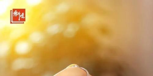2017年9月13日,新境第73期中高级茶艺师班的学员们结束了十日的习茶时光。通过6日的课程学习与4日的茶山实践,从茶叶基础知识到实地考察环环相扣的体验,学员们的习茶之旅圆满落下帷幕。▲新境第73期中高级茶艺师班结业典礼合影 十天的光阴,像是一坛浓缩的蜜罐,人们的微笑被一张合影定格了下来...<br /><a href='http://www.tea1199.com/a/2017/peixundongtai_0917/1089.html'> <<< 详情</a>