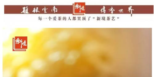 <br /><a href='http://www.tea1199.com/a/2017/peixundongtai_1105/1090.html'> <<< 详情</a>